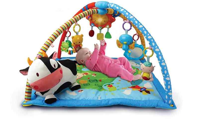 VTech Baby Manta convertible en gimnasio (3480-146422)