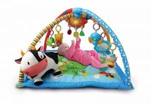 ¿Qué son los gimnasios para bebés?